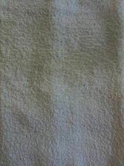 畳拭き・1回目