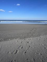 海だか空だか