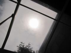 凶暴な太陽は、テラス越しじゃないと