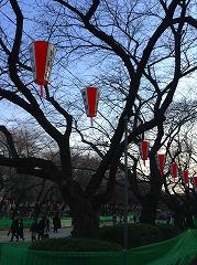 日曜日・上野公園